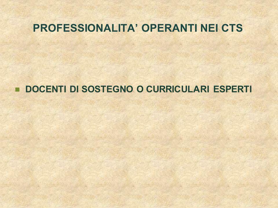PROFESSIONALITA' OPERANTI NEI CTS