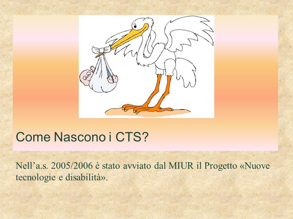 Come Nascono i CTS. Nell'a.s.