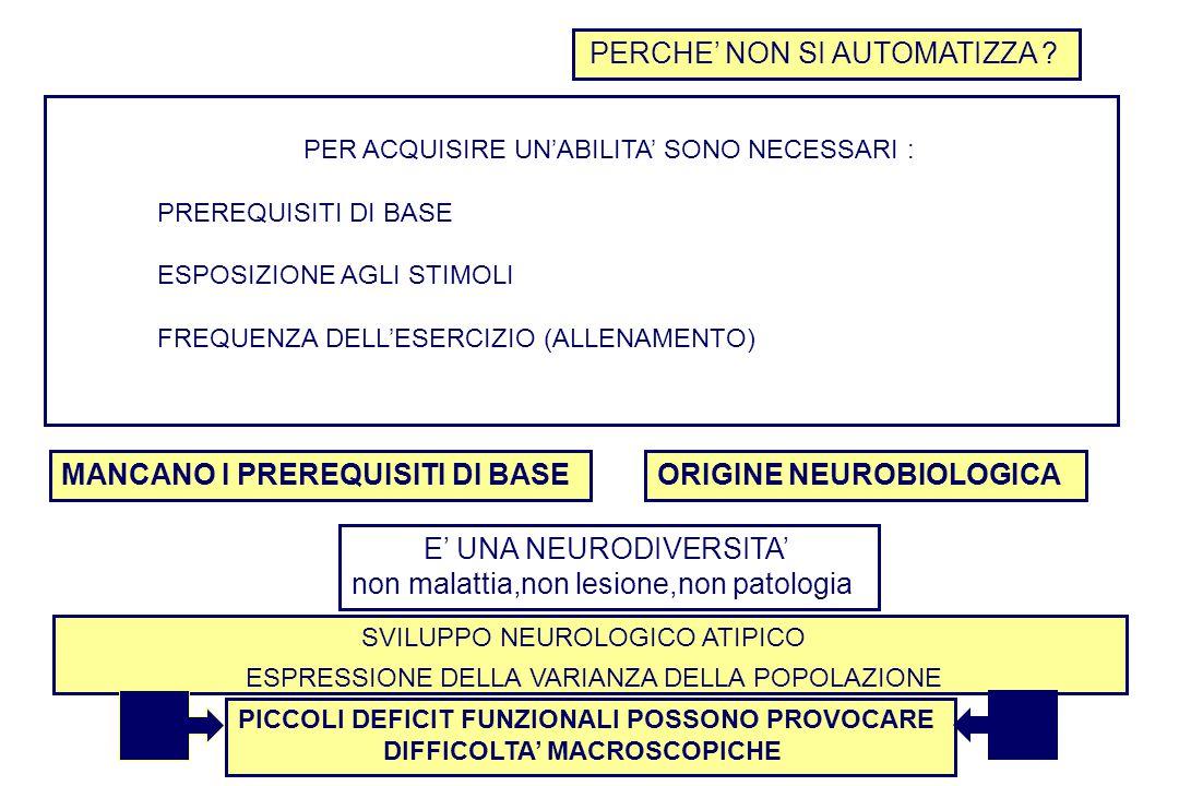 ORIGINE NEUROBIOLOGICA