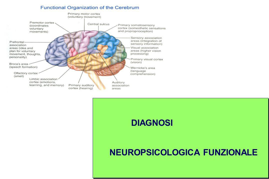 DIAGNOSI NEUROPSICOLOGICA FUNZIONALE