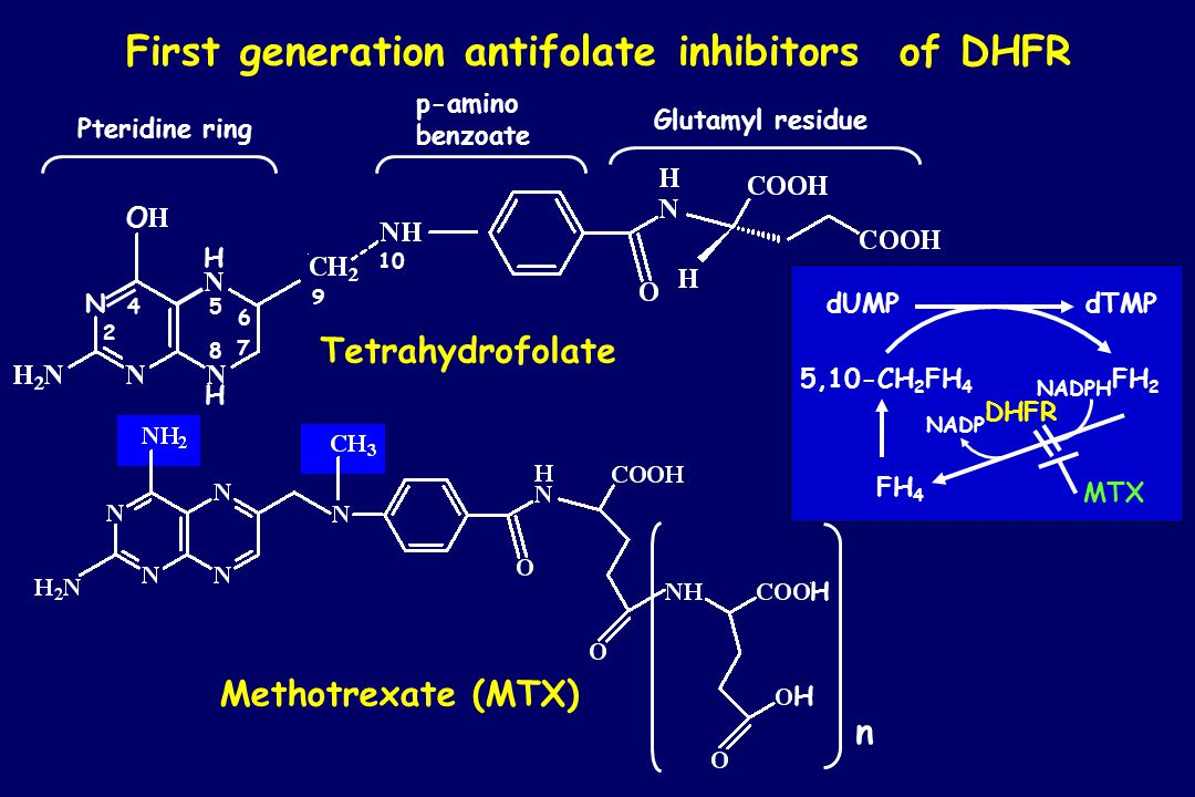 First generation antifolate inhibitors of DHFR