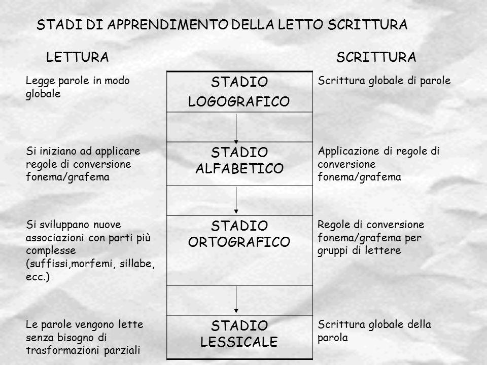 STADI DI APPRENDIMENTO DELLA LETTO SCRITTURA LETTURA SCRITTURA