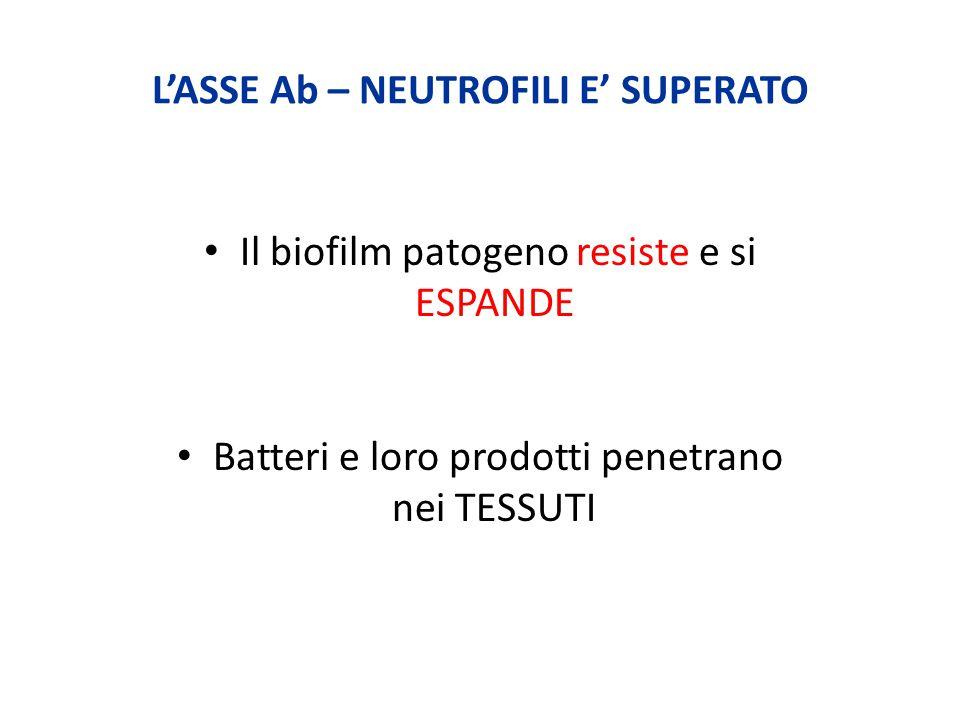 L'ASSE Ab – NEUTROFILI E' SUPERATO