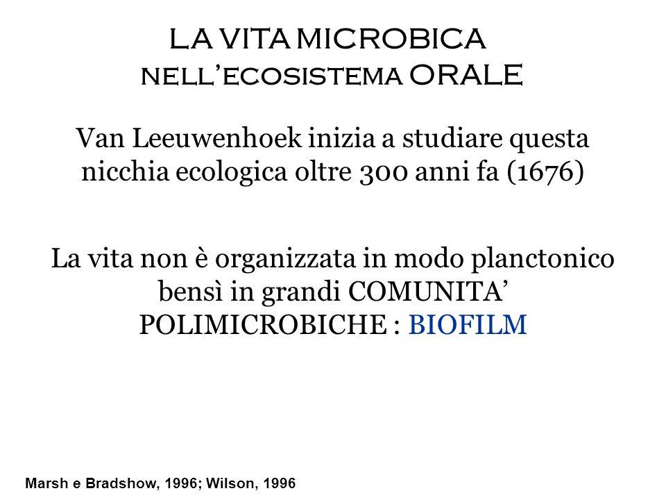 LA VITA MICROBICA nell'ecosistema ORALE