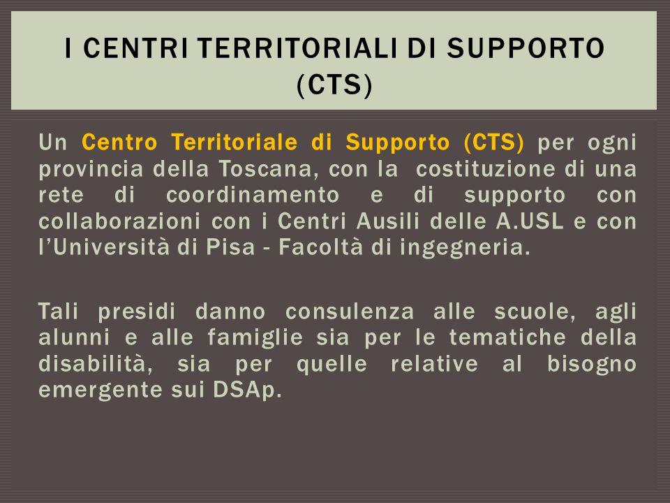 I centri territoriali di supporto (CTS)