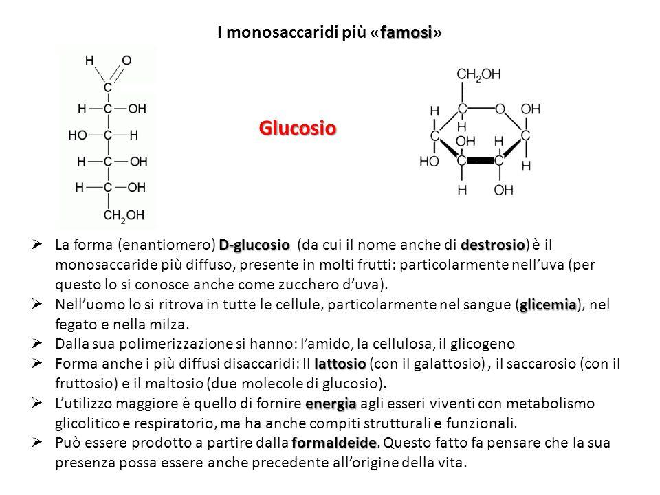 Glucosio I monosaccaridi più «famosi»