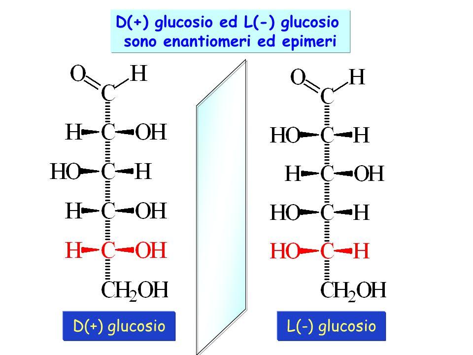 D(+) glucosio ed L(-) glucosio sono enantiomeri ed epimeri