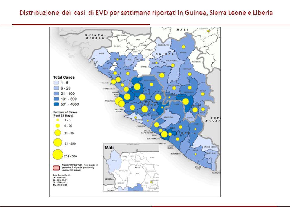 Distribuzione dei casi di EVD per settimana riportati in Guinea, Sierra Leone e Liberia