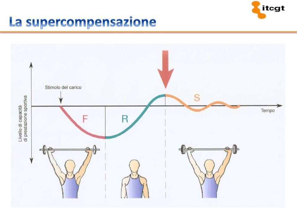 La supercompensazione
