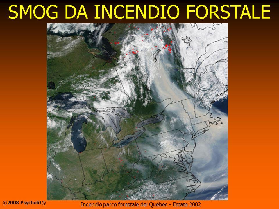 SMOG DA INCENDIO FORSTALE