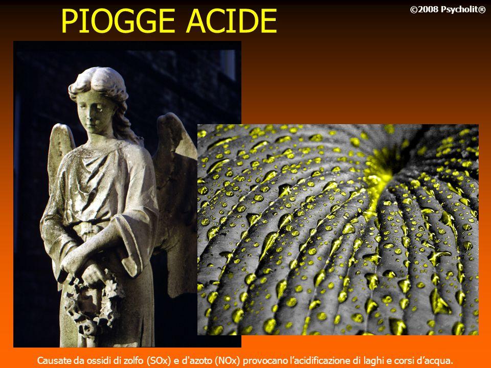PIOGGE ACIDE ©2008 Psycholit® Causate da ossidi di zolfo (SOx) e d azoto (NOx) provocano l'acidificazione di laghi e corsi d'acqua.