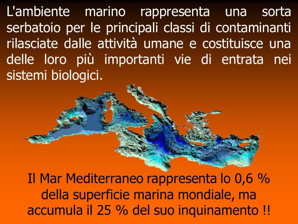 L ambiente marino rappresenta una sorta serbatoio per le principali classi di contaminanti rilasciate dalle attività umane e costituisce una delle loro più importanti vie di entrata nei sistemi biologici.