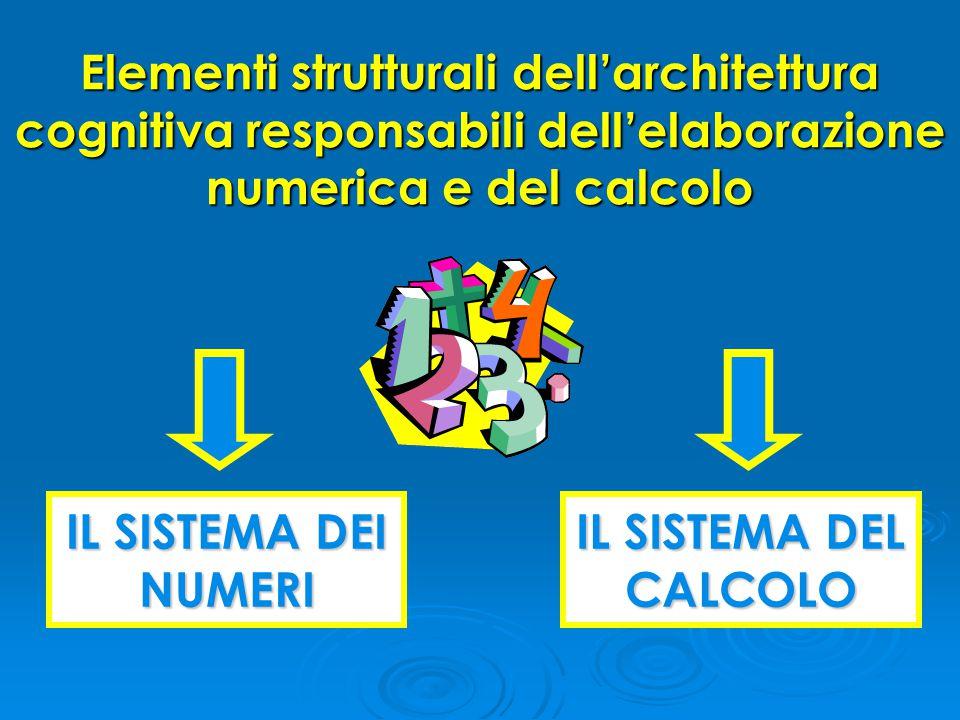 Elementi strutturali dell'architettura cognitiva responsabili dell'elaborazione numerica e del calcolo