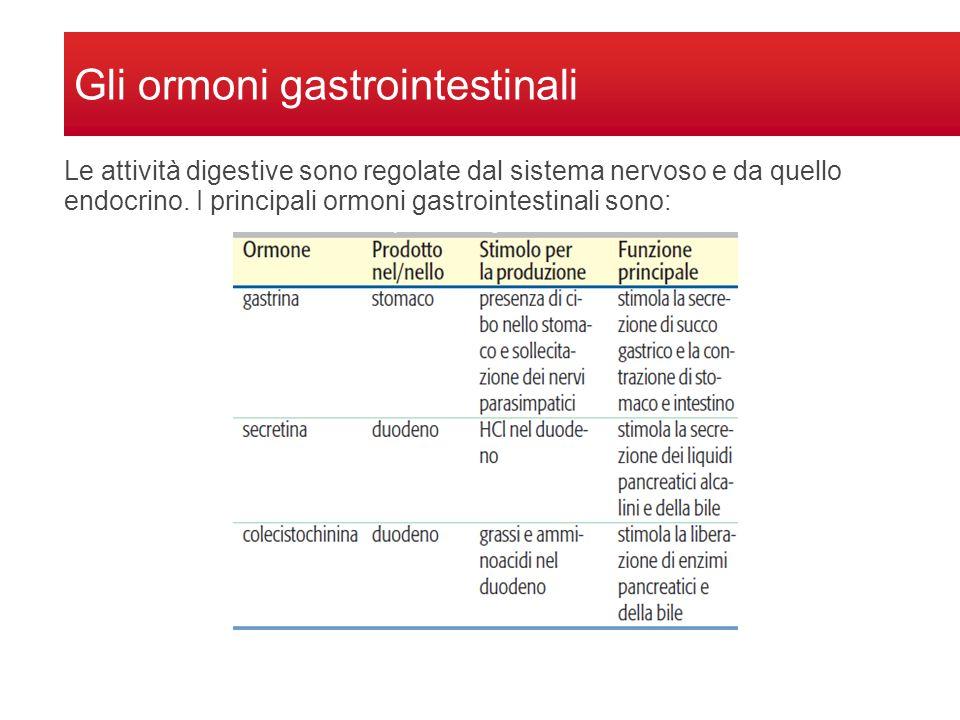 Gli ormoni gastrointestinali