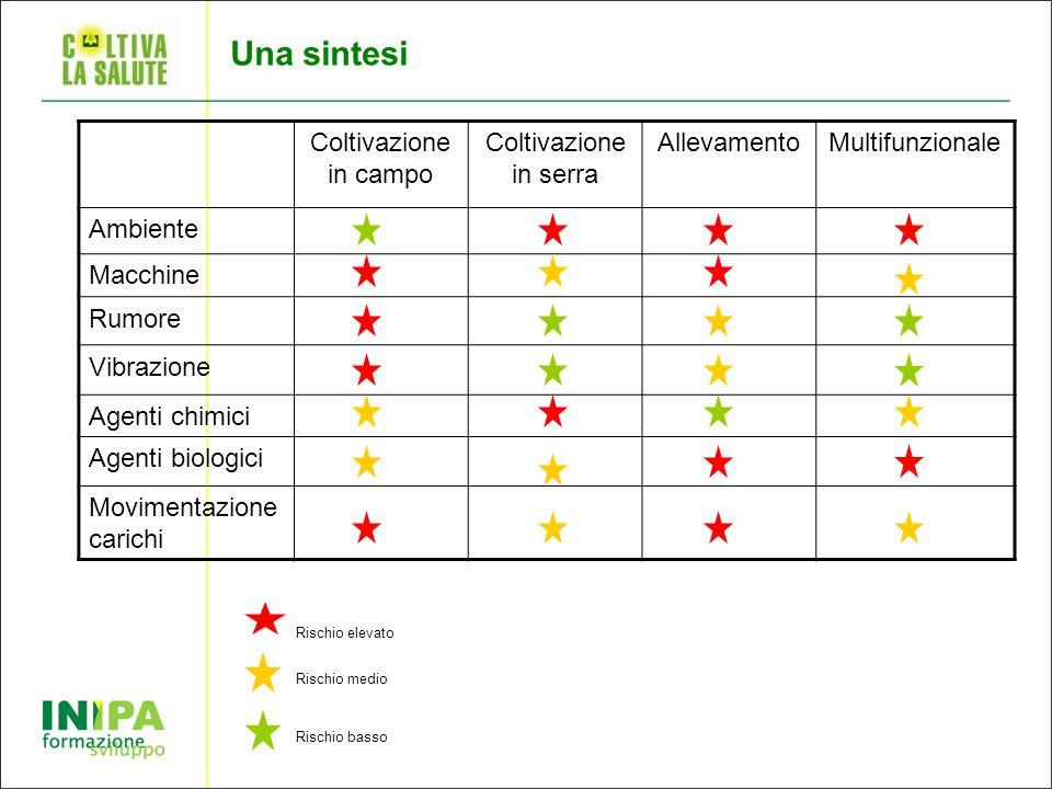 Una sintesi Coltivazione in campo Coltivazione in serra Allevamento