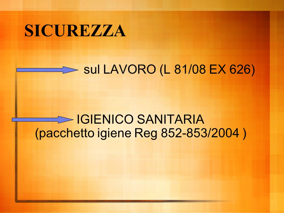 SICUREZZA sul LAVORO (L 81/08 EX 626)