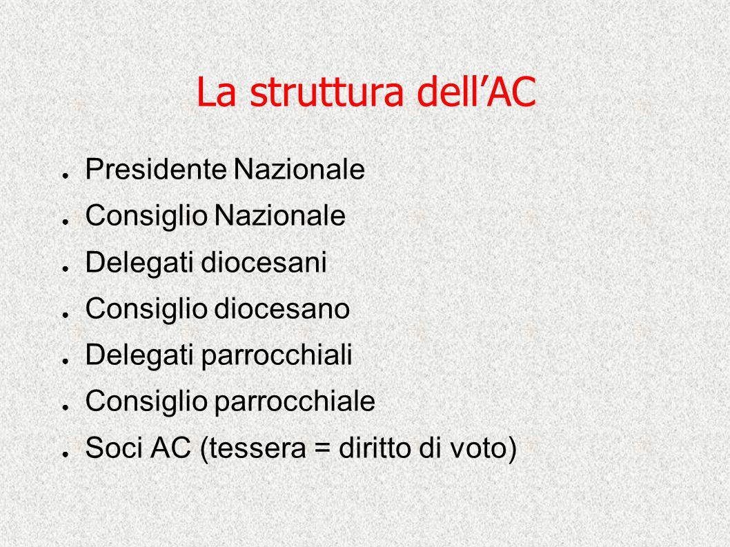 La struttura dell'AC Presidente Nazionale Consiglio Nazionale