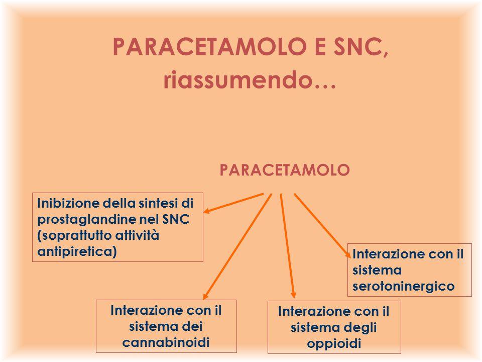 PARACETAMOLO E SNC, riassumendo…
