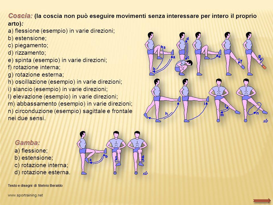 Coscia: (la coscia non può eseguire movimenti senza interessare per intero il proprio arto):