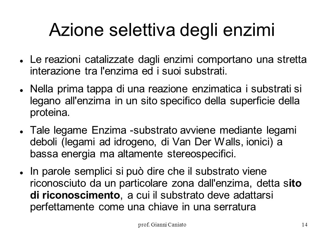 Azione selettiva degli enzimi