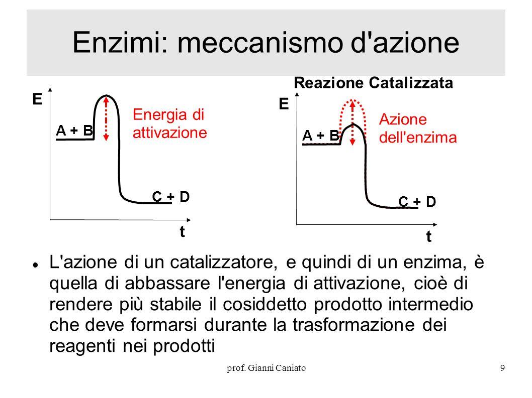 Enzimi: meccanismo d azione