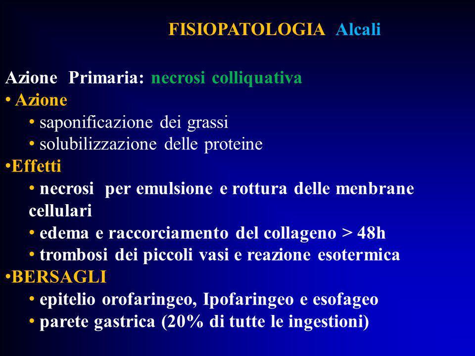 FISIOPATOLOGIA Alcali