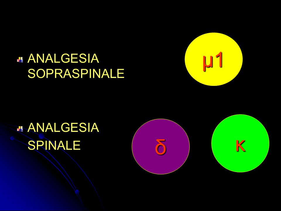 μ1 ANALGESIA SOPRASPINALE ANALGESIA SPINALE κ δ