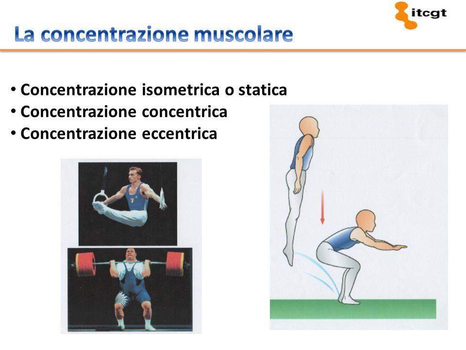 La concentrazione muscolare
