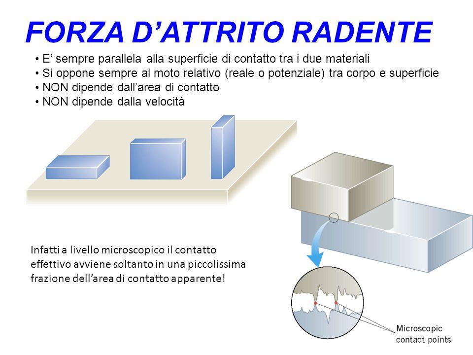 FORZA D'ATTRITO RADENTE