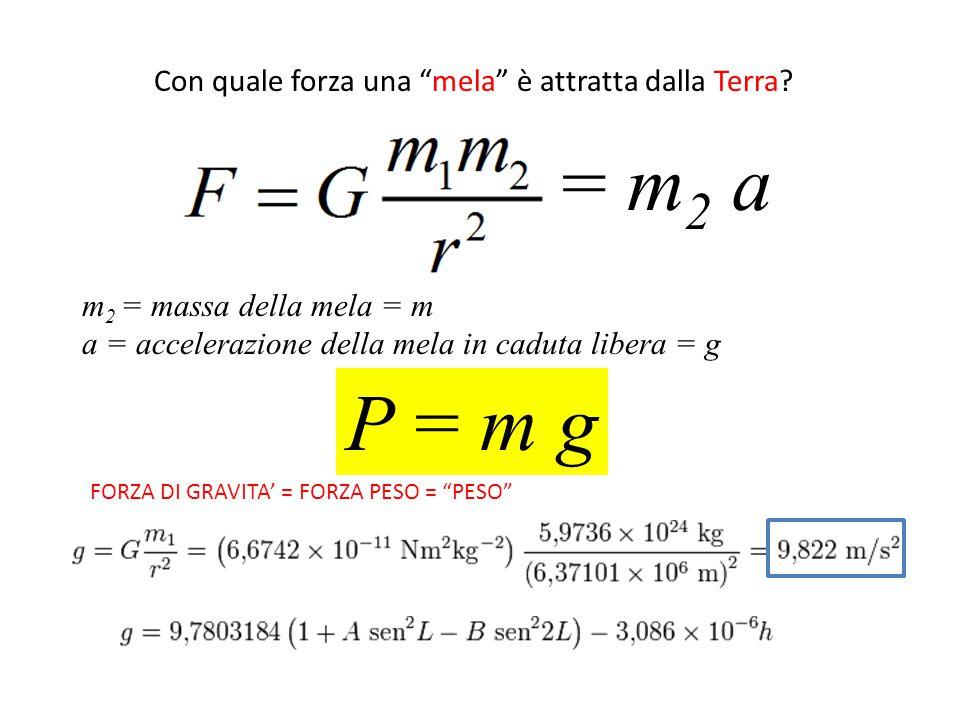 = m2 a P = m g Con quale forza una mela è attratta dalla Terra