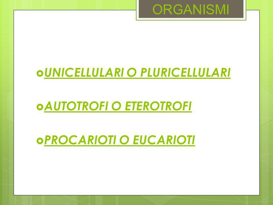 ORGANISMI UNICELLULARI O PLURICELLULARI AUTOTROFI O ETEROTROFI
