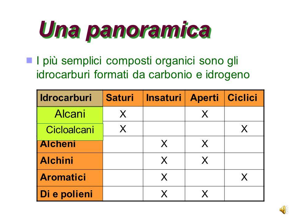 Una panoramica I più semplici composti organici sono gli idrocarburi formati da carbonio e idrogeno.