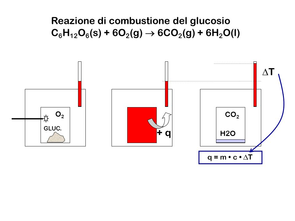 Reazione di combustione del glucosio