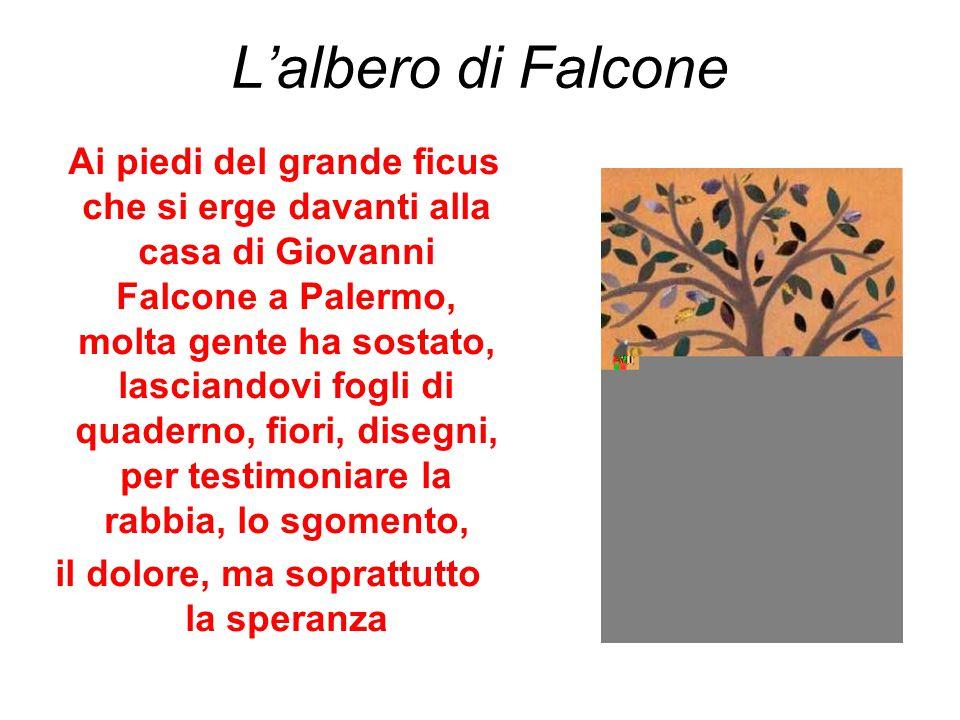 L'albero di Falcone