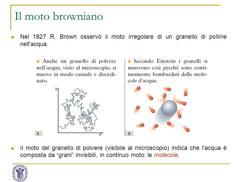Il moto browniano Nel 1827 R. Brown osservò il moto irregolare di un granello di polline nell acqua.
