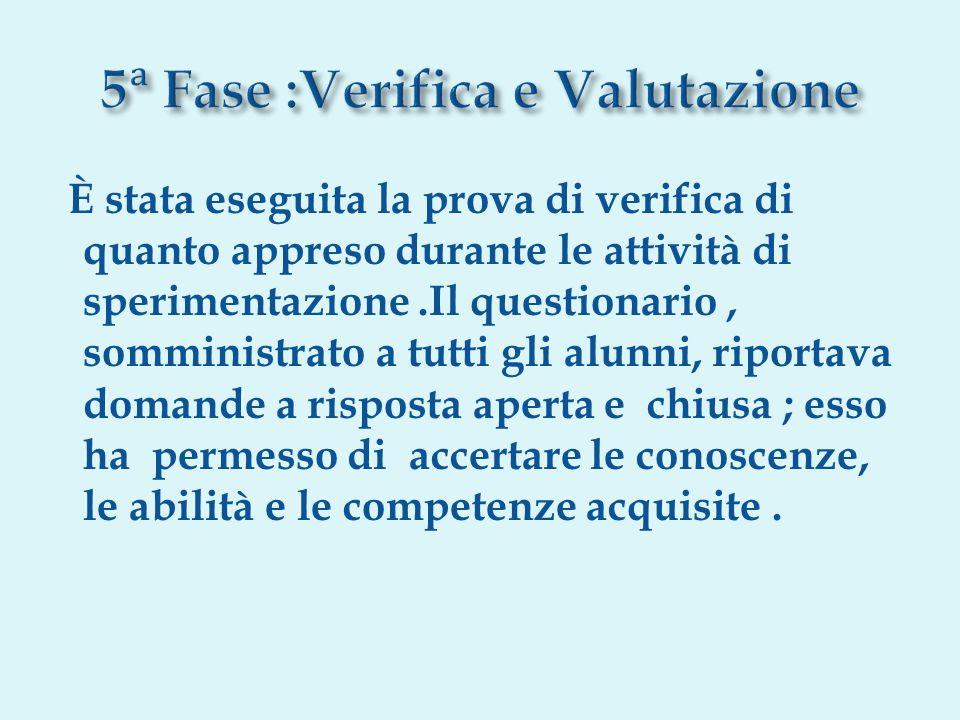 5ᵃ Fase :Verifica e Valutazione