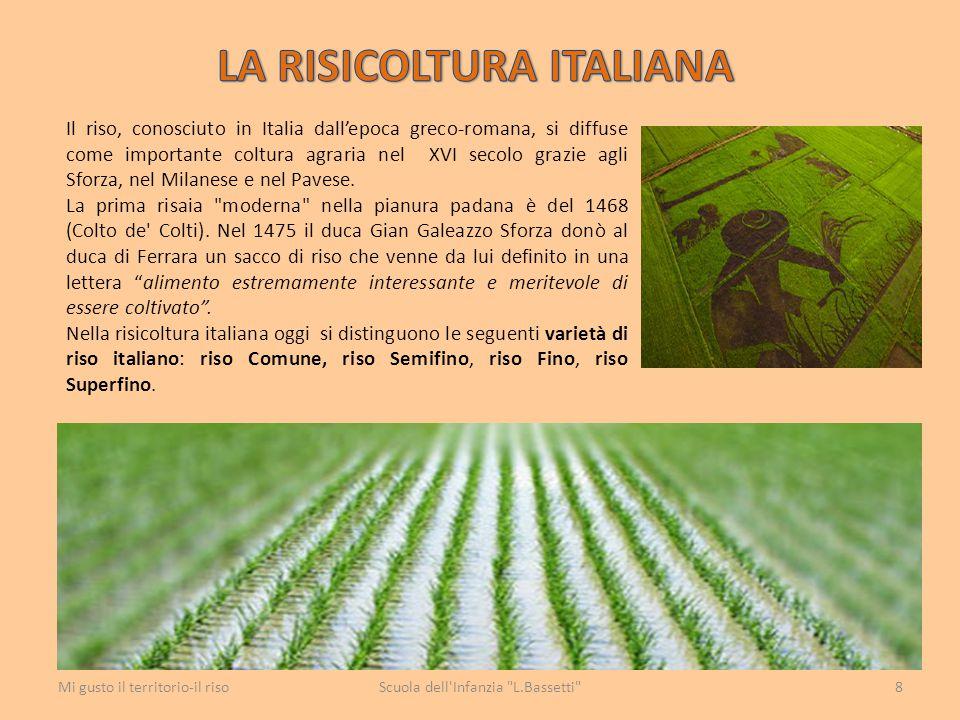 LA RISICOLTURA ITALIANA