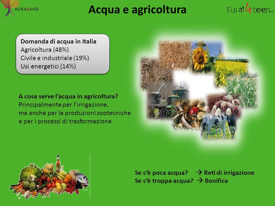 Acqua e agricoltura Domanda di acqua in Italia Agricoltura (48%)