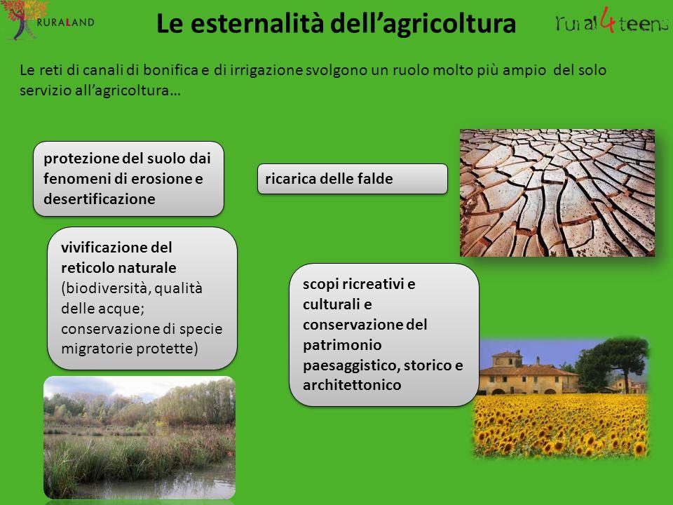 Le esternalità dell'agricoltura