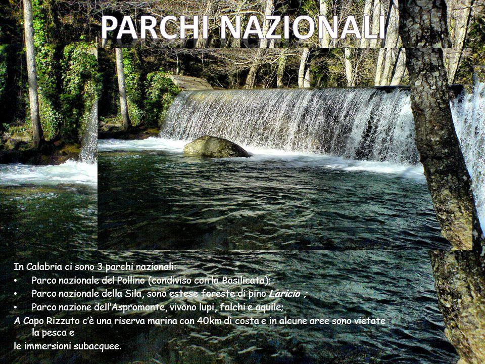 Parchi nazionali In Calabria ci sono 3 parchi nazionali: