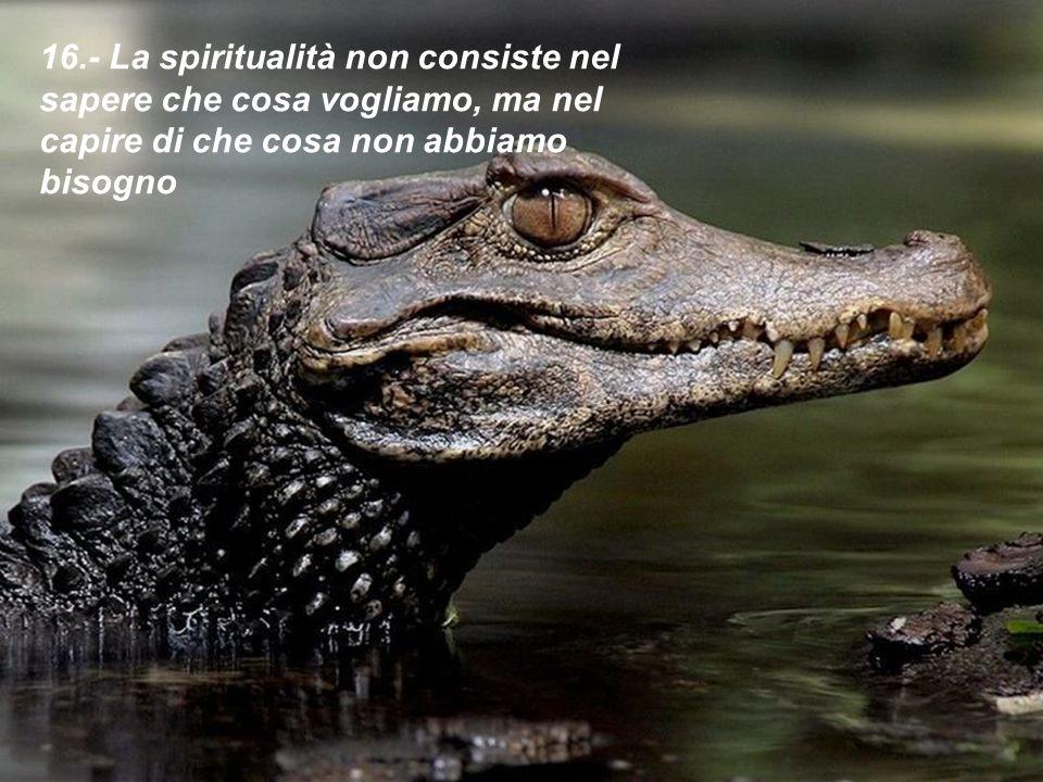 16.- La spiritualità non consiste nel sapere che cosa vogliamo, ma nel capire di che cosa non abbiamo bisogno