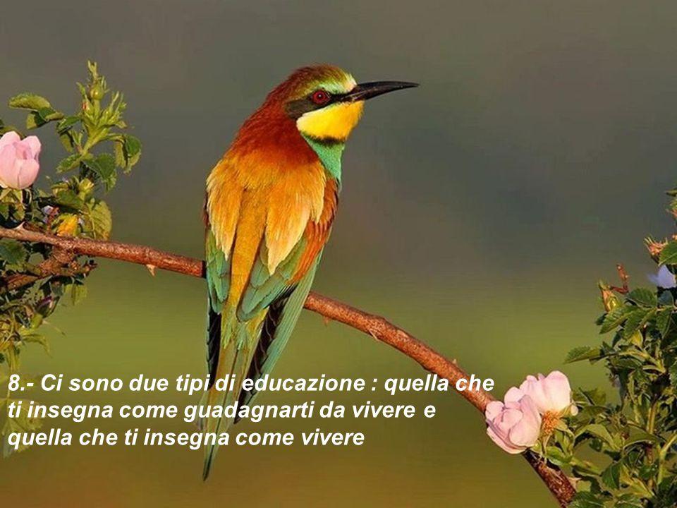 8.- Ci sono due tipi di educazione : quella che ti insegna come guadagnarti da vivere e quella che ti insegna come vivere