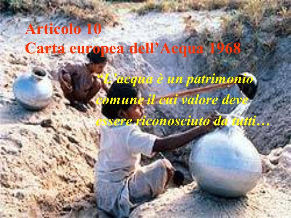 Articolo 10 Carta europea dell'Acqua 1968