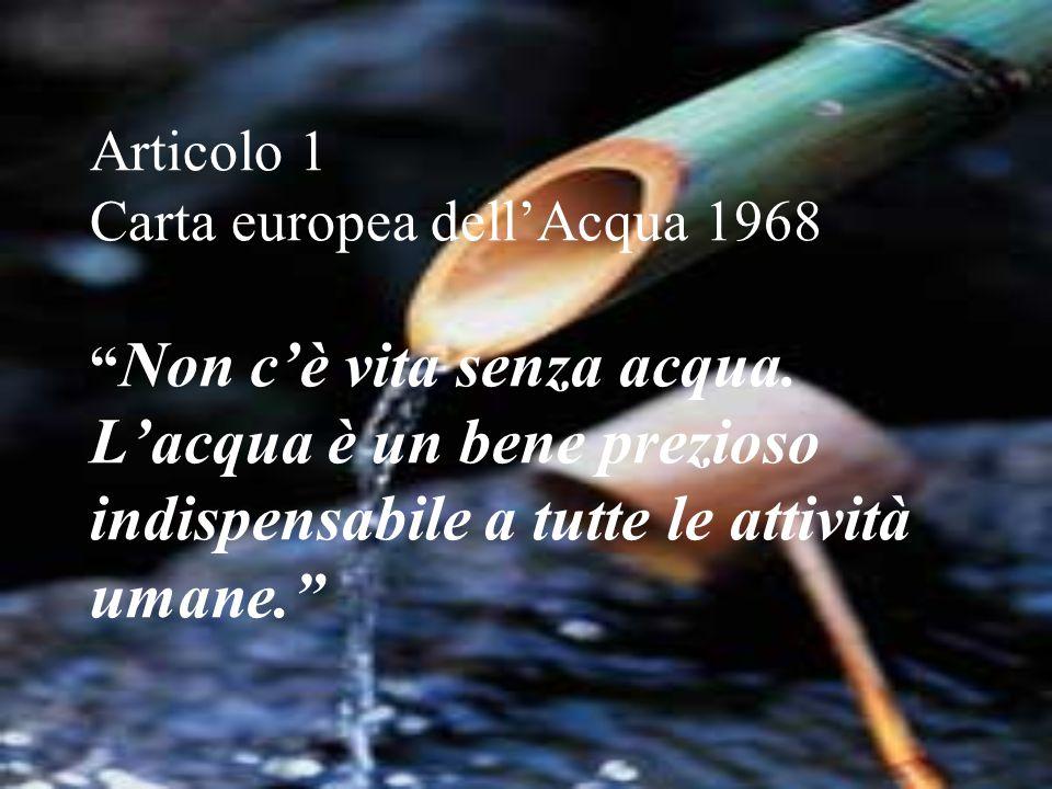 Articolo 1 Carta europea dell'Acqua 1968 Non c'è vita senza acqua