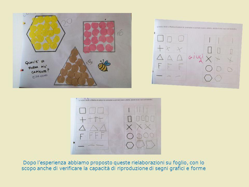 Dopo l'esperienza abbiamo proposto queste rielaborazioni su foglio, con lo scopo anche di verificare la capacità di riproduzione di segni grafici e forme