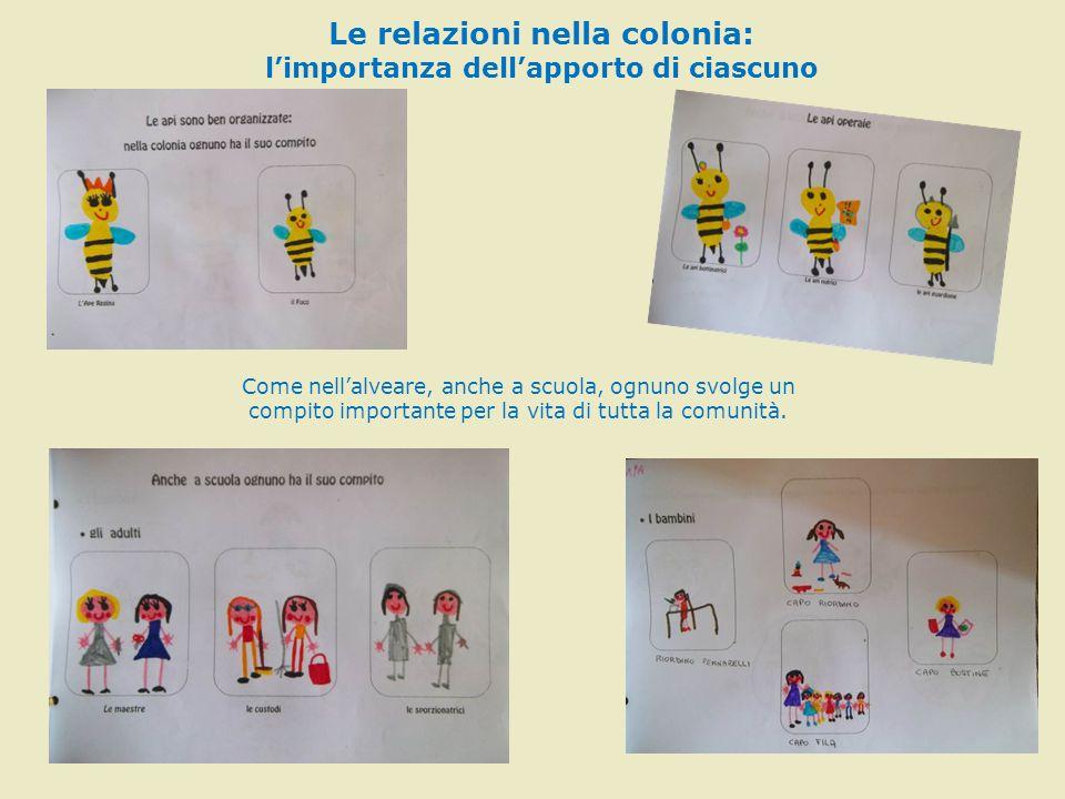 Le relazioni nella colonia: l'importanza dell'apporto di ciascuno