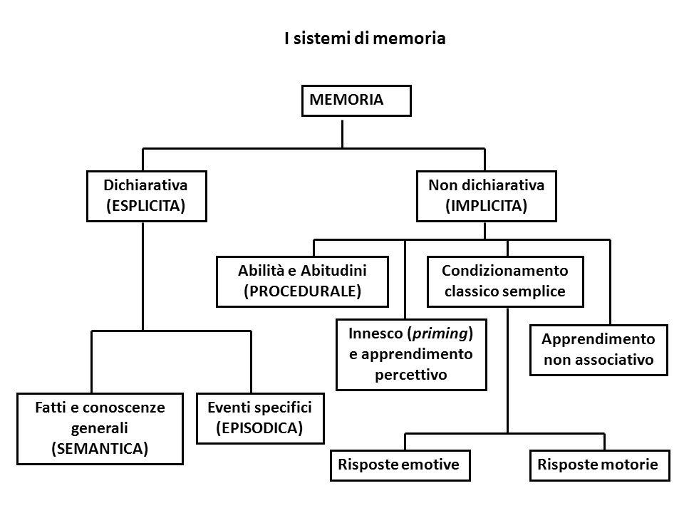 I sistemi di memoria MEMORIA Dichiarativa (ESPLICITA) Non dichiarativa