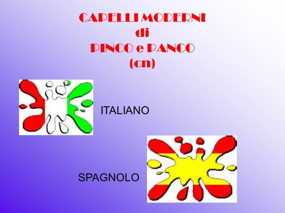 CAPELLI MODERNI di PINCO e PANCO (cn)