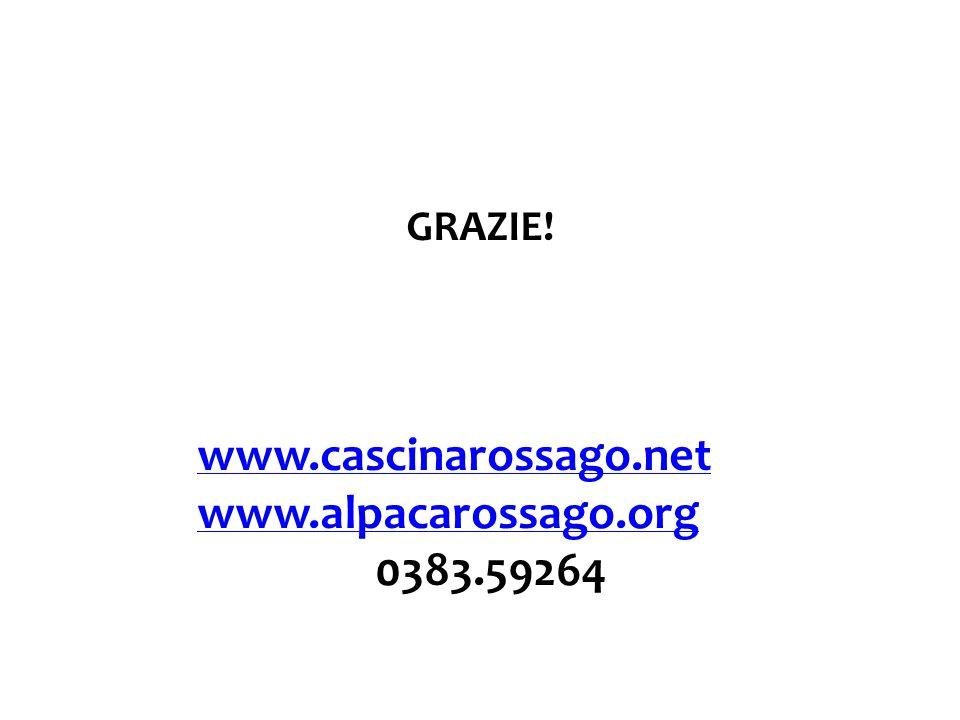 GRAZIE! www.cascinarossago.net www.alpacarossago.org 0383.59264
