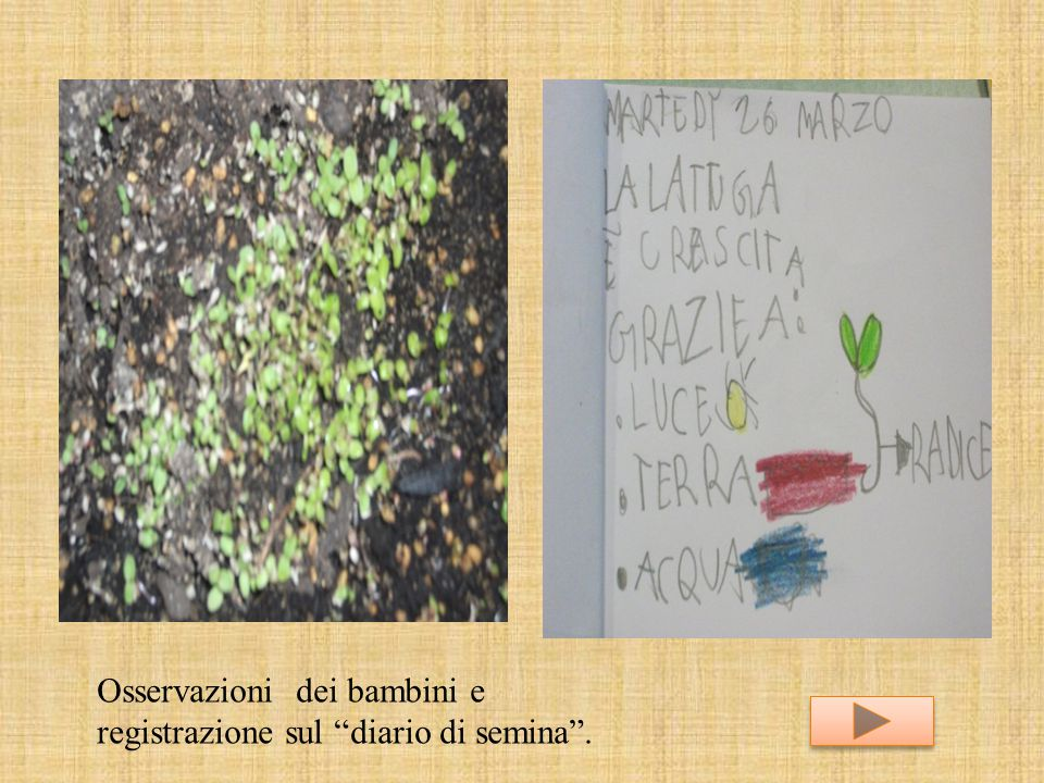 Osservazioni dei bambini e registrazione sul diario di semina .